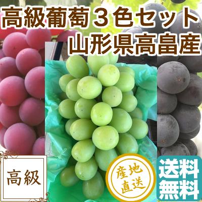高級葡萄3色セット 贈答用2kg 3~5房 山形県高畠産 送料無料 残暑御見舞い 敬老の日