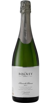 【送料無料】【イングリッシュワイン】ボルニーブラン・ド・ブラン ブリュット白 2010年 6本セット