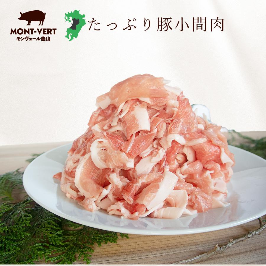 基本冷蔵 熊本県 豚肉 小間切れ10kg(1kg×10) 美味しいお肉 こま切れ 細切れ 豚小間 メガ盛り ギガ盛り 業務用 ストック ふるさと納税でも人気の返礼品 小分け対応 送料無料 冷蔵 生 冷凍可 春バテ
