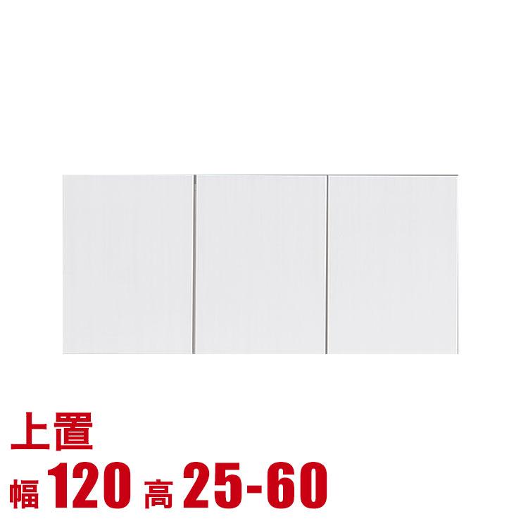 上置き 上棚 棚 高級 壁面収納 ファンシー 専用上置き 板戸 幅120 奥行42・31 高さ25-80 ホワイト 耐震 完成品 日本製 送料無料