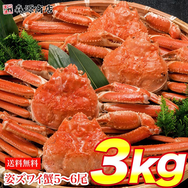 姿ずわいがに 3kg 5?6尾 蟹 カニ かに ずわいがに ズワイガニ カニミソ かにみそ 蟹味噌 業務用 送料無料 ひな祭り
