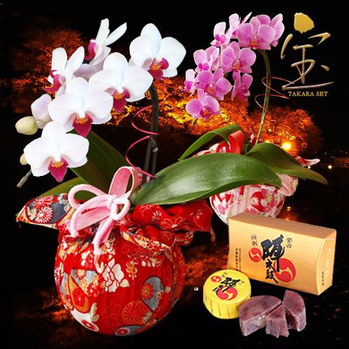 お花が大好きなおばあちゃんへ!敬老の日のプレゼントを探しています。