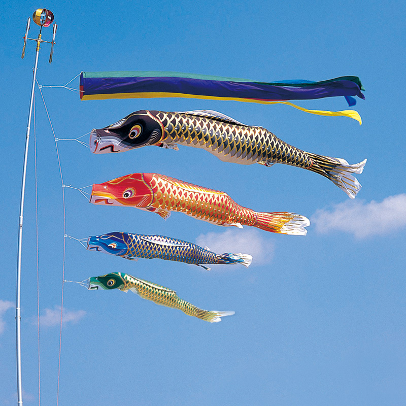 【10%OFFクーポン配布中】【江戸錦鯉】【6m】【7点 鯉4匹 】五色吹き流し錦鯉 鯉のぼり 大型セット