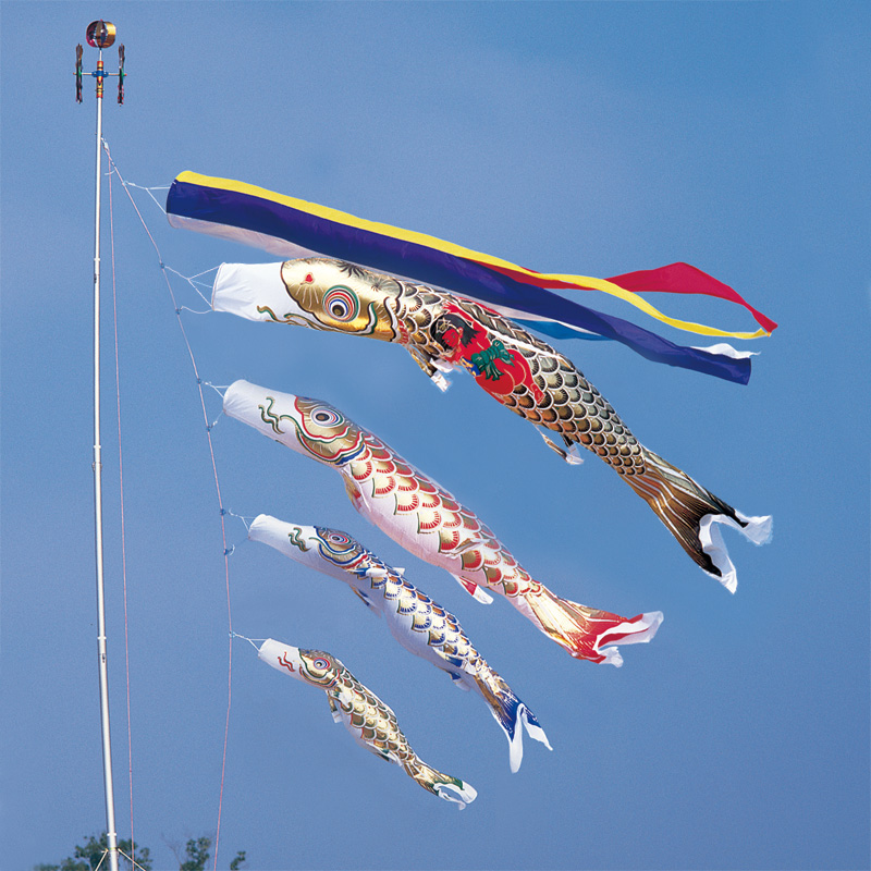 【10%OFFクーポン配布中】【黄金錦鯉】【5m】【7点 鯉4匹 】金太郎付 五色吹き流し錦鯉 鯉のぼり 大型セット