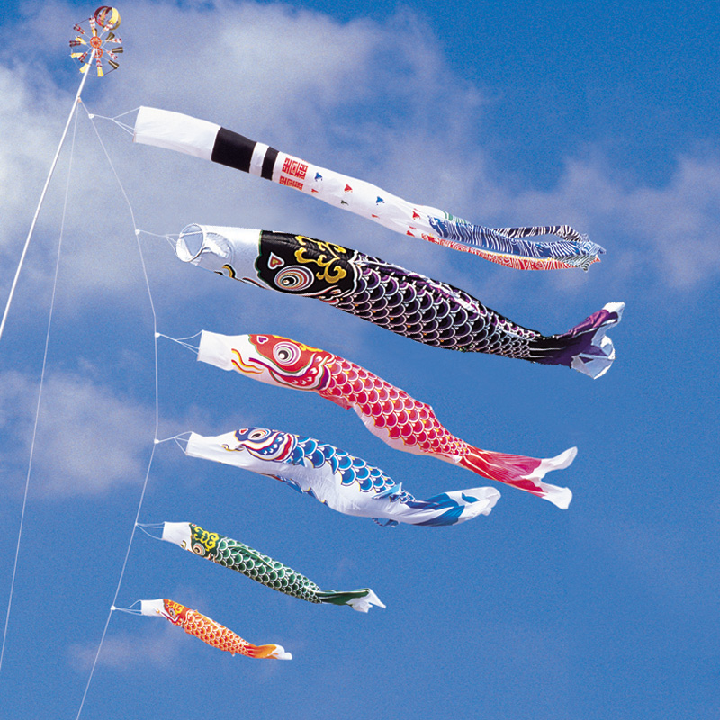 【綾錦鯉】【8m】【8点 鯉5匹 】浪千鳥吹き流し錦鯉 鯉のぼり 大型セット【送料無料】
