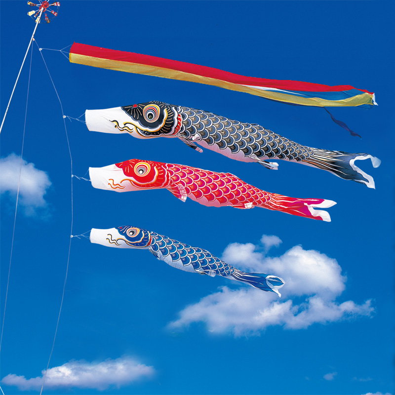 【金寿鯉】【6m】【6点 鯉3匹 】五色吹き流し錦鯉 鯉のぼり 大型セット【送料無料】