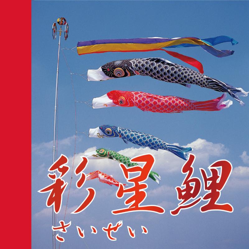 【彩星】【3m】【8点 鯉5匹 】森景オリジナル鯉のぼり8点セット【送料無料】
