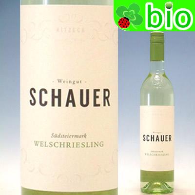 ビオワイン:自然派 ヴェルシュリースリング ズュートシュタイヤーマルク 2019 Welschriesling 人気の製品 Schauer 蔵 Suuml;dsteiermark シャウアー