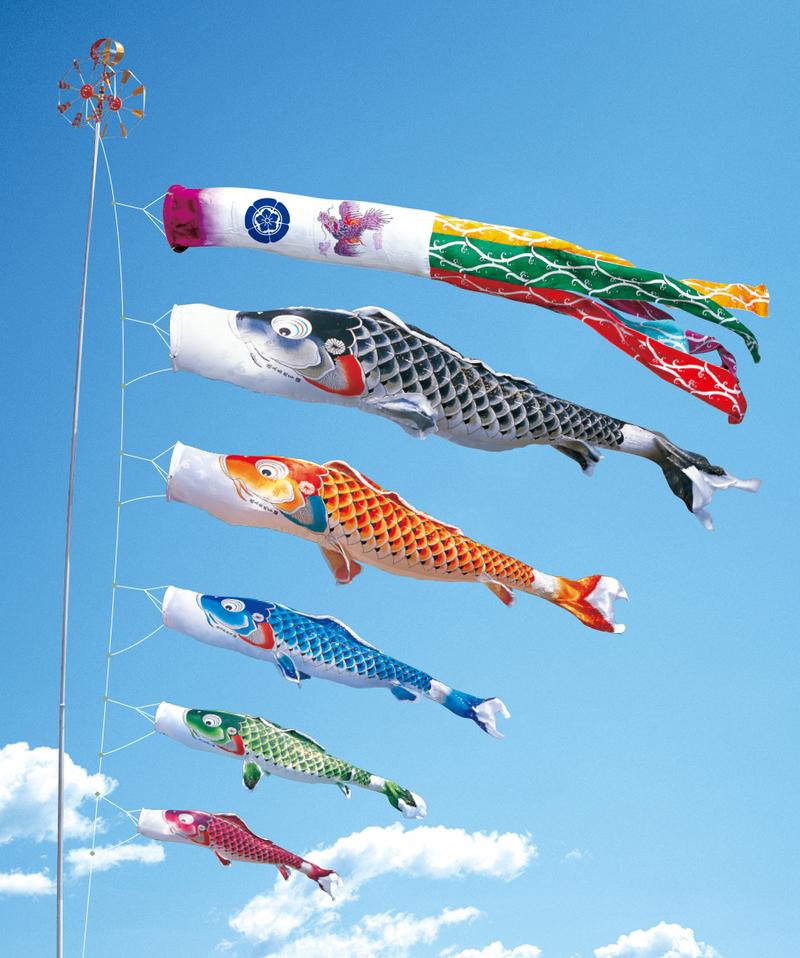慶祝の鯉 吉兆 1.5m  プレミアムベランダスタンドセット(水袋)
