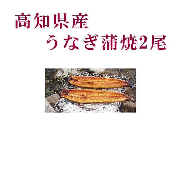 毎週更新 高知県産うなぎの蒲焼 甘目でうまみたっぷりの蒲焼です 高知県産 うなぎ蒲焼 2尾 四万十 アウトレット☆送料無料 ウナギ 無添加 冷凍 国産 鰻 高知