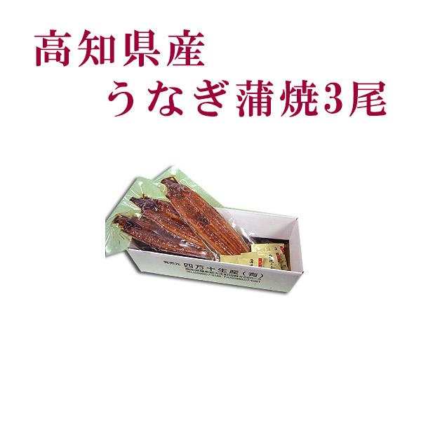 高知県産 うなぎ蒲焼 3尾/四万十/高知/冷凍/国産/無添加/ウナギ/鰻