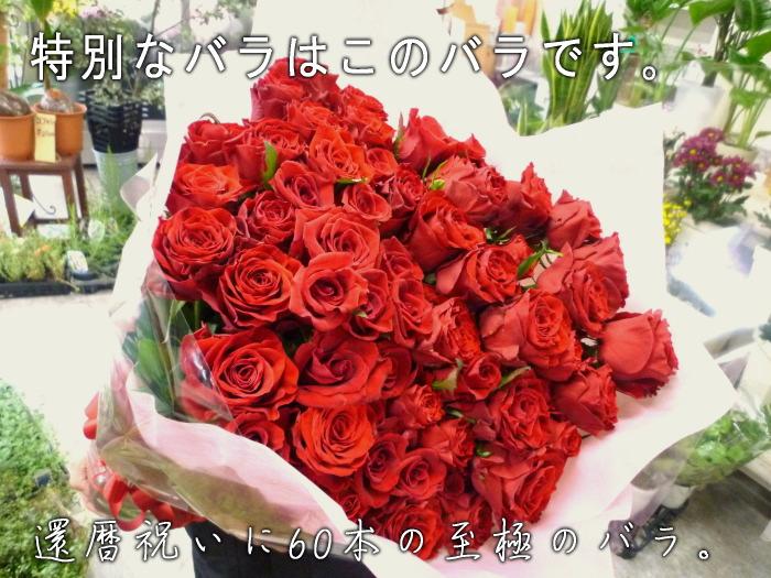 至極の赤いバラ(薔薇)60本の花束。特別な赤バラを揃えた、至極の大きい花束。上質なバラを贅沢に束ねています。特別なプレゼントや、プロポーズなどにお贈りくださいませ。