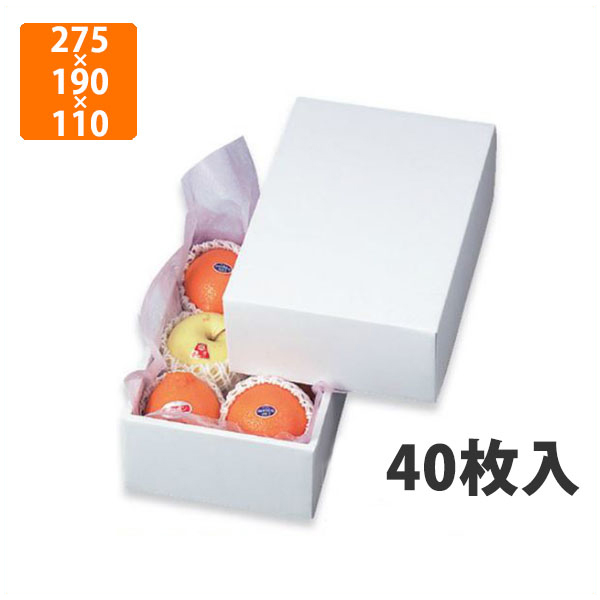 【化粧箱】LTO-1グロス 275×190×110mm(40枚入)【代引不可】