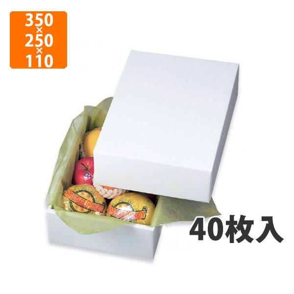 【化粧箱】LTO-4グロス 350×250×110mm(40枚入)【代引不可】