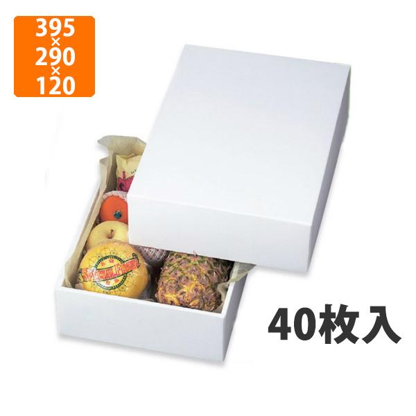【化粧箱】LTO-6グロス 395×290×120mm(40枚入)【代引不可】