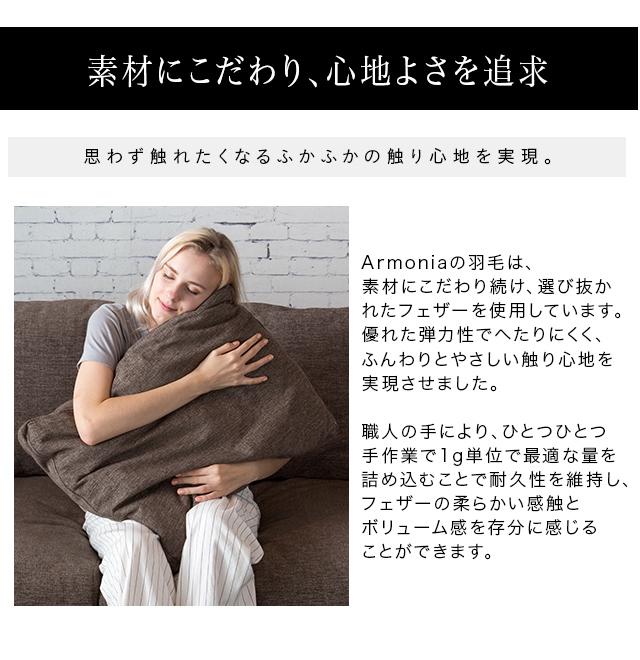 クッション 45cm×45cm ソファ クッションカバー ヌードクッション 新生活 モダン Armonia