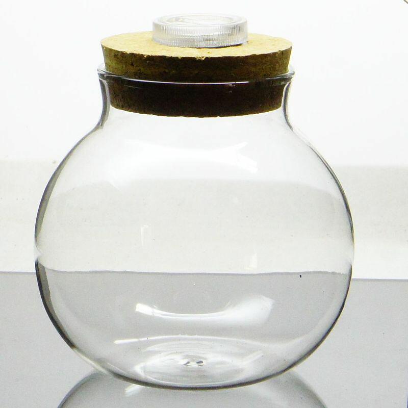 ライト付きで苔がキラキラ輝く S LEDライト付き コルク蓋 ガラスボトル ボトルアクアリウム 苔テラリウム容器 即納 ボトリウム 中古