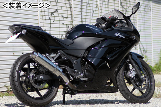 REALIZE Aria SUS TypeS(ステンレス) マフラー/Ninja250R[JBK-EX250K] 507-SO-003-02