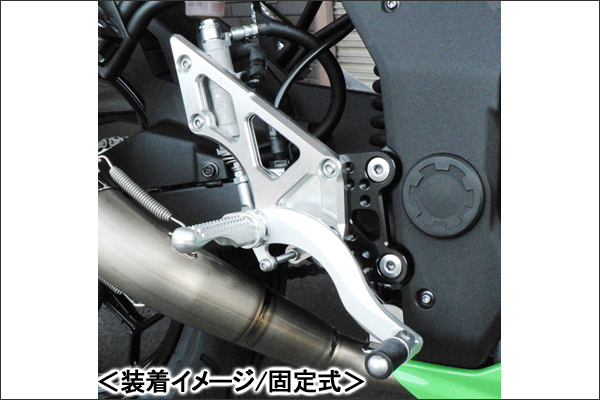 BEET ハイパーバンク(シルバー/固定式)/Ninja250SL 0111-KD2-20