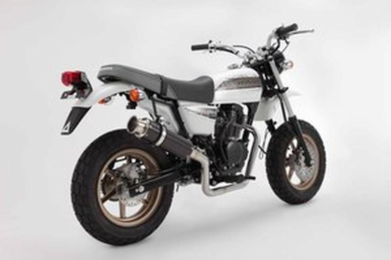 BEAMS (ビームス) バイク用 マフラー APE100D EBJ - HC13 フルエキ フルエキゾースト SS 300 カーボン/アップタイプ B140-08-003