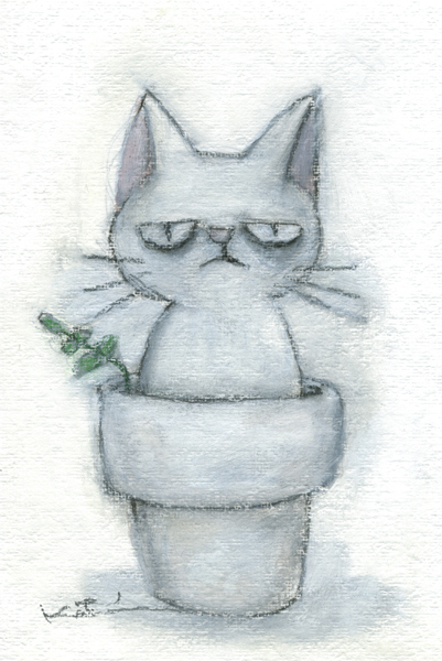 【作家名】香月和夫 【作品名】ぶー白猫