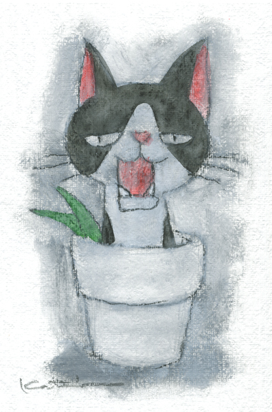 【作家名】香月和夫 【作品名】ハチワレ鉢猫