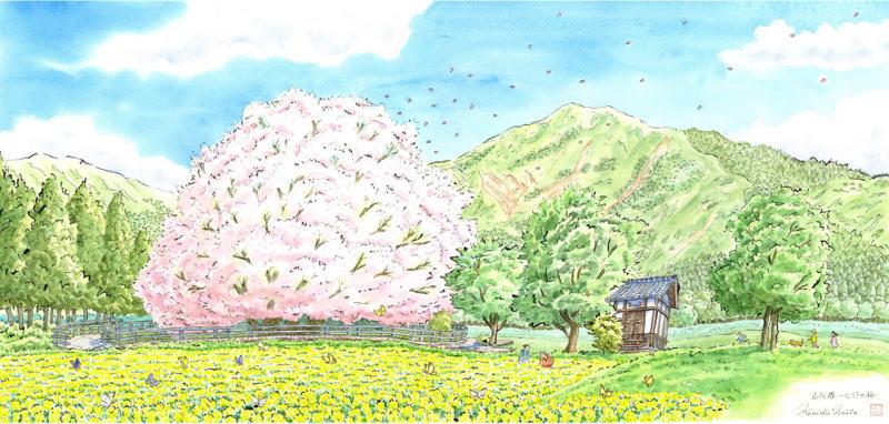 【作家名】内藤謙一 【作品名】南阿蘇・一心行の桜