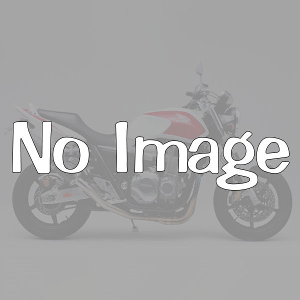 デイトナ DAYTONA 94057 GIVI 635F モノラック用フィッティング BMW R850R('95~'02) R1100R('95~'01)