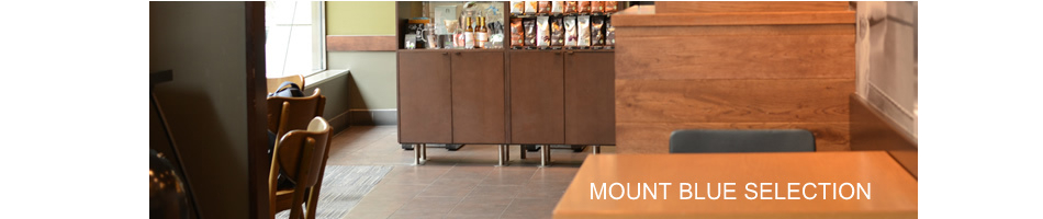 MOUNT BLUE SELECTION:レディースファッション カットソーを中心にTシャツなどを扱うお店です