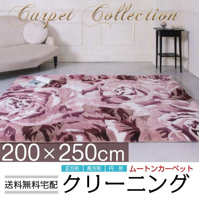 ムートン クリーニング【送料無料】 約250x300cm 長方形 カーペット ウール 敷物