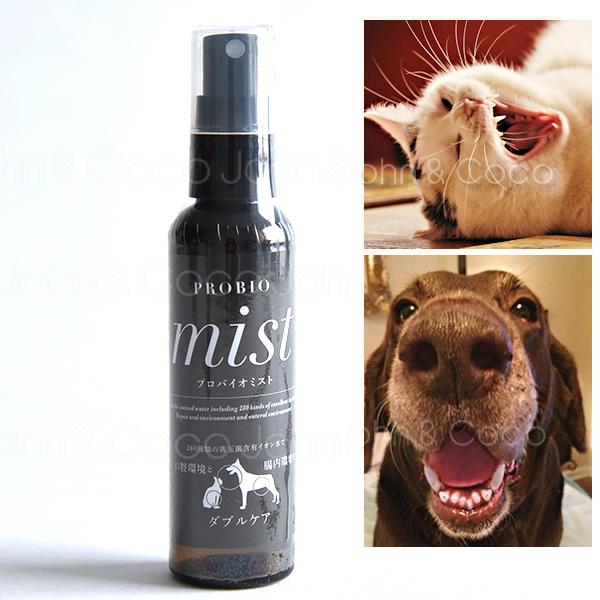 獣医師推奨品 口腔内にスプレーするだけ 歯ブラシ 歯磨き 不要の液体歯磨き プロバイオミスト スプレー歯磨き 信頼 定価 デンタルケア 80ml 猫 犬 正規品