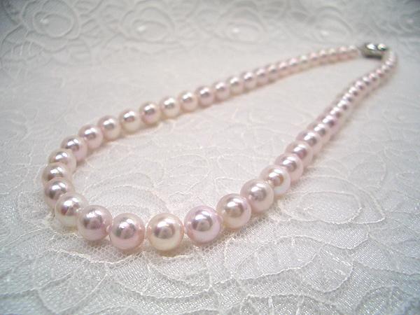 定番サイズで使いまわせるお手頃ネックレス♪SVアコヤ真珠ネックレス 約7.5~8.0mm   ギフト プレゼント