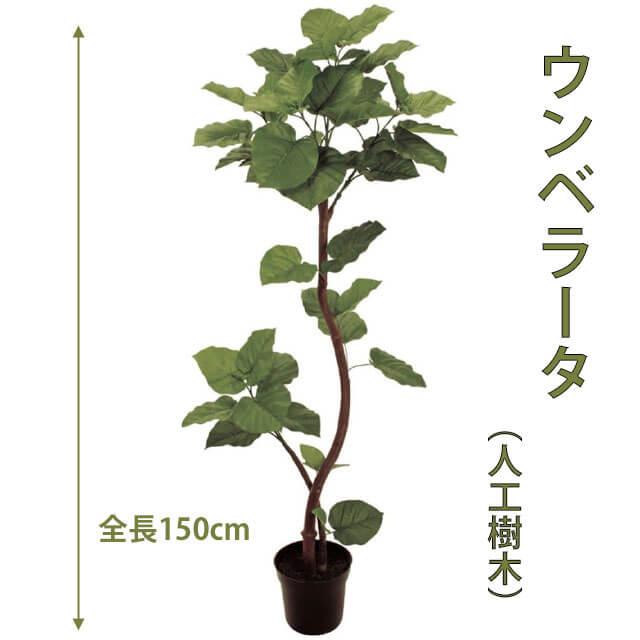 ウンベラ―タ 150cm 人工樹木 人工観葉植物 造花 インテリア グリーン 5229 玄関やリビングのインテリアに【送料無料】 GR_0020