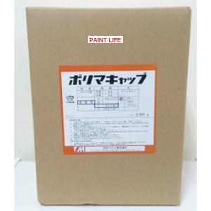 水谷ペイントポリマキャップ スレート用小波 6φ グレー充填剤あり 1箱(100ヶ)