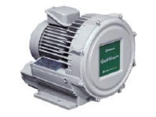 【組立・輸送等の都合で納期に1週間以上かかります】 Showa/昭和電機 【代引不可】電動送風機 渦流式高圧シリーズ ガストブロアシリーズ(0.3kW) U2V-30T