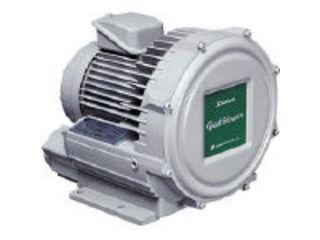 【組立・輸送等の都合で納期に1週間以上かかります】 Showa/昭和電機 【代引不可】電動送風機 渦流式高圧シリーズ ガストブロアシリーズ(0.1kW) U2V-10T