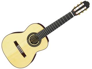 Aria/アリア A-50A-S アルトギター(レキントギター) 【沖縄・九州地方・北海道・その他の離島は配送できません】 【配送時間指定不可】
