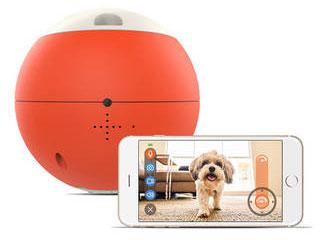 ・ペット用IoT商品 ビーラボ 遠隔操作も可能なロボット型おもちゃ easyPlay(イージープレイ) V15 ・スマートフォンで操作できるペット用おもちゃ ・間違って飲み込んだりしないよう、頑丈なつくりでサイズにもこだわって作られています。