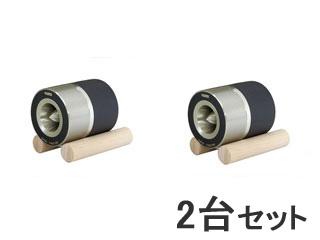 FOSTEX/フォステクス 【2台セット!】 スピーカーユニット ホーンスーパーツイーター T90A
