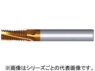 NOGA/ノガ 超硬ソリッドミルスレッドBSP 1212D19 14BSPT MT-7