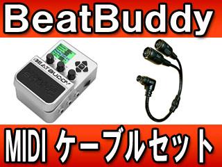 Singular Sound/シングラー・サウンド 【納期未定】 【MIDIケーブルセット!】 BeatBuddy(ビート・バディ) リズムマシン