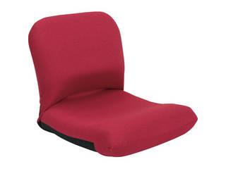 背中を支える美姿勢座椅子 レッド 背中 CBC-313 RE
