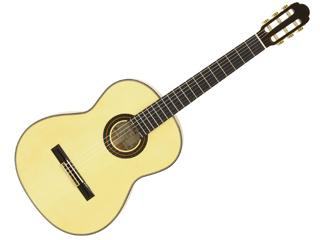 Aria/アリア A-100F クラシックギター 【Flamenco】【ソフトケース付き】【ARIACG】 【沖縄・九州地方・北海道・その他の離島は配送できません】 【RPS160228】【配送時間指定不可】