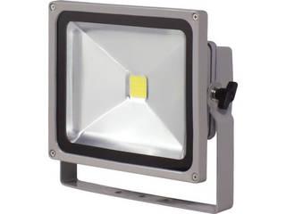 NICHIDO/日動工業 LED作業灯 30W LPR-S30D-3ME