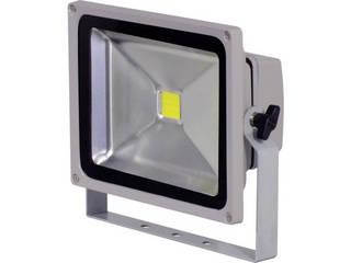 NICHIDO/日動工業 LED作業灯 50W LPR-S50D-3ME