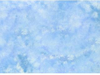 Lastolite/ラストライト 【納期にお時間がかかります】LL LB56FM  折り畳み式リバーシブル背景 1.5 X 1.8m フロリダ / メイン