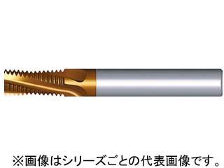 NOGA/ノガ 超硬ソリッドミルスレッドBSP 0606C9 28BSPT MT-7