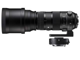 SIGMA/シグマ 150-600mm F5-6.3 DG OS HSM Sports テレコンバーターキット シグマ用