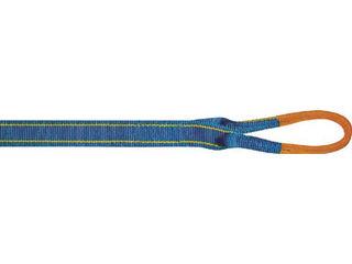 TORAY/東レインターナショナル シライ シグナルスリングHG 両端アイ形 幅50mm 長さ5.0m SG4E50-5