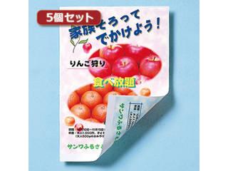 サンワサプライ 【5個セット】サンワサプライ インクジェット用両面印刷紙・厚手(大容量) JP-ERV5NA4-100X5